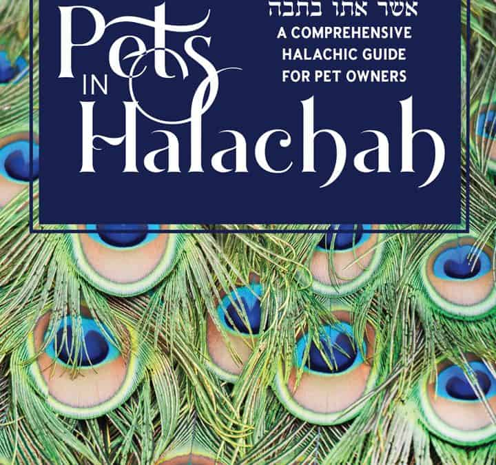 Pets in Halachah