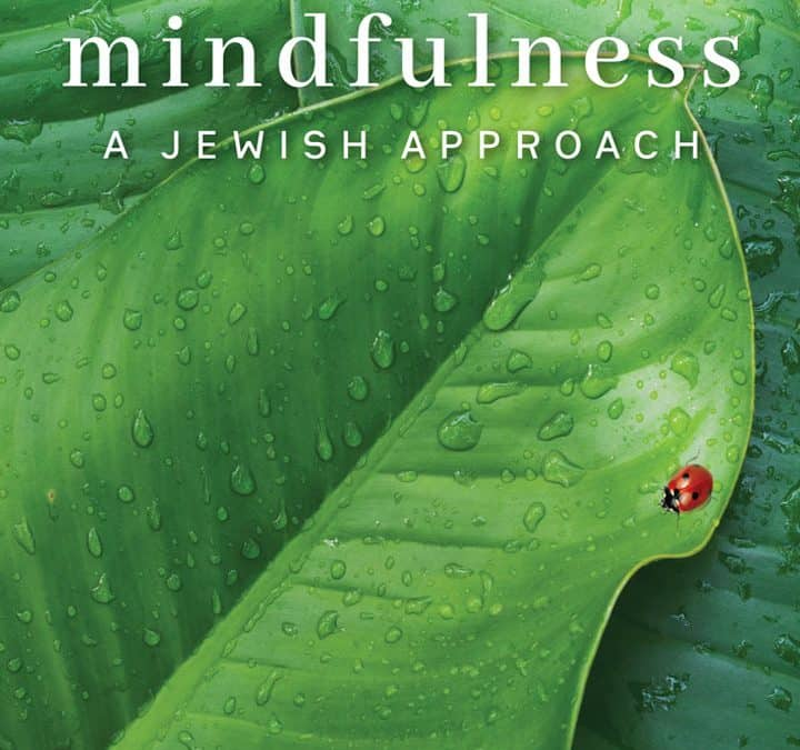 Mindfulness – Forthcoming